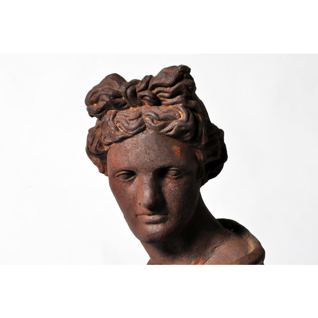 Iron Bust of Apollo Belvedere - Image 10 of 11