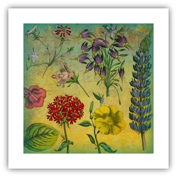 Garden Botanical Archival Print - Image 1 of 3