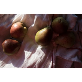 "Nicole Cohen ""Pears"" Large Pigment Print For Sale"