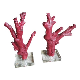 Faux Coral Branches on Glass Bases, a Pair For Sale