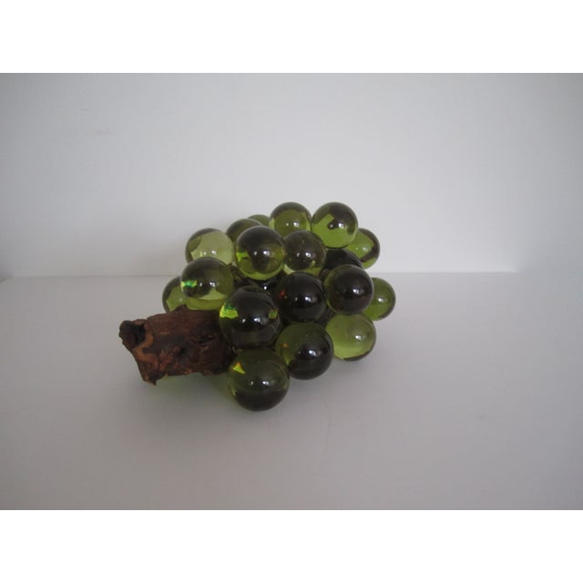 Green Resin Grapes on the Vine - Image 5 of 9