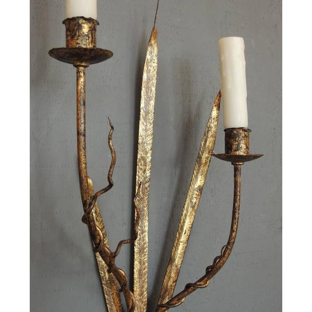 Mediterranean Pair of Early 20th C Spanish Organic Free Form Gilt Tole Sconces For Sale - Image 3 of 5
