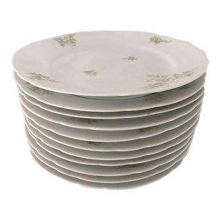 Antique Floral Bone China Dinner Plates - Set of 11