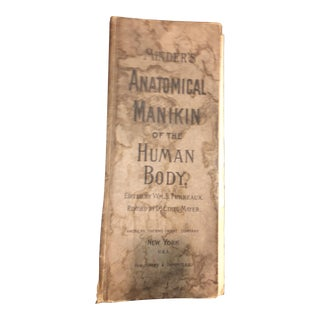Anatomical Manikin of the Human Body Book For Sale