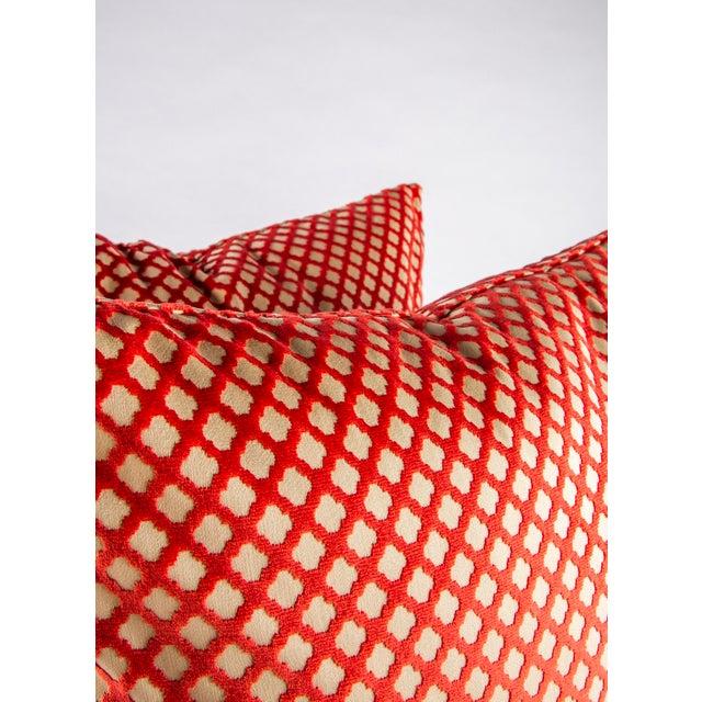 "Scalamandre 22"" X 22"" Velvet Scalamandre Pomfret Down Pillows For Sale - Image 4 of 8"