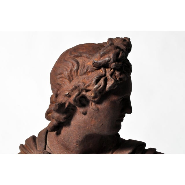 Iron Bust of Apollo Belvedere - Image 6 of 11