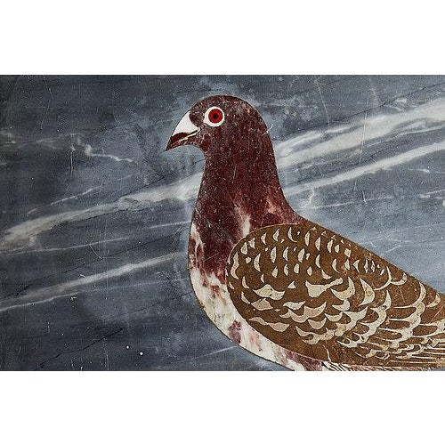 Italian Marble and Scagliola Picture of Pigeon in Original Marble Frame For Sale - Image 3 of 4