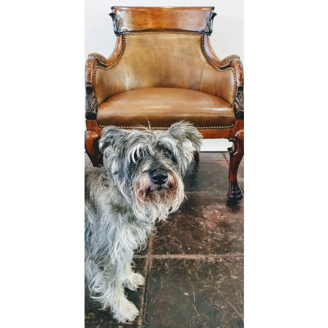 Queen Anne Trouvailles Meyer Gunther Martini Leather Upholstered Hand Carved Wood Bergere Chair For Sale - Image 3 of 12