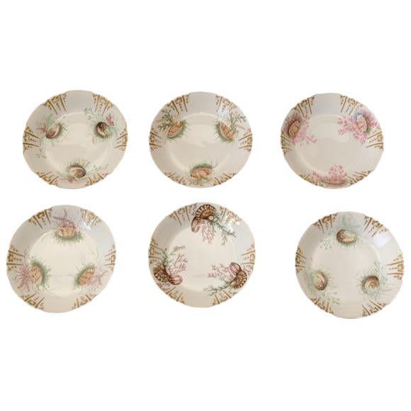 Shell Decorated Dishes - Set of 6 For Sale