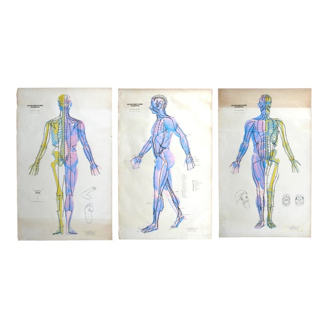 Vintage Acupuncture Serigraphs on Linen by Felix Mann - Set of 3 For Sale