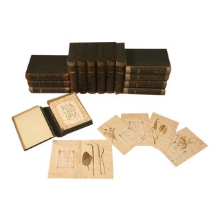 Circa 1887-1900 Henri Dard Pressed Botanical Books - Set of 14