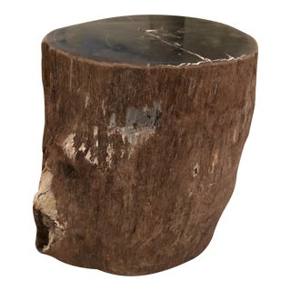 Restoration Hardware Petrified Fossilized Wood Stump End Side Table Stool For Sale