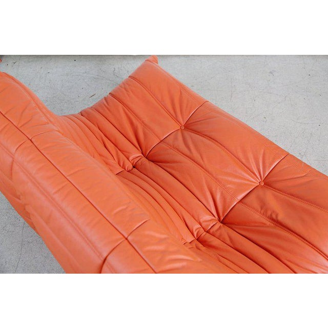 Orange Togo Loveseat in Orange Leather by Michel Ducaroy for Ligne Roset, France For Sale - Image 8 of 13