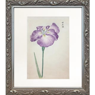 Antique Embossed Japanese Woodblock Print of Iris Flower Signed For Sale