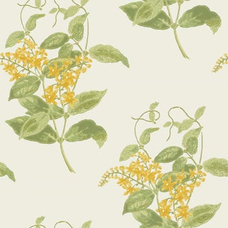 Cole & Son Madras Violet Classic Botanical Style Wallpaper - 11 Yard Roll For Sale
