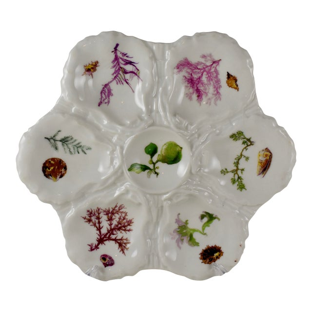 Haviland Limoges Porcelain Hand Painted Sea Fan & Shells Oyster Plate For Sale