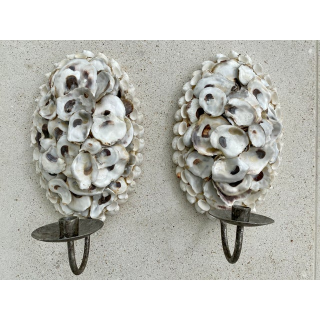 Oly Studio Oyster Shell Candle Wall Sconces - a Pair For Sale - Image 12 of 13