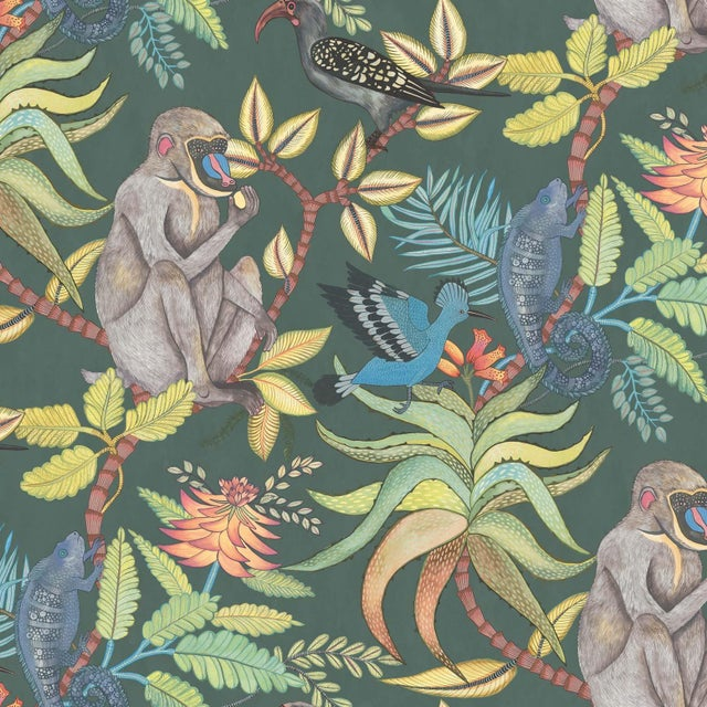 African Cole & Son Savuti Classic Wallpaper Sample For Sale - Image 3 of 5