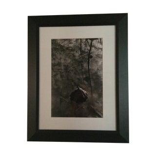 Jason Thrasher Lotus Pond Photograph 1 For Sale