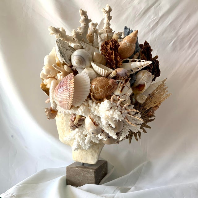 Large Shell Hygiea Bust For Sale - Image 9 of 12
