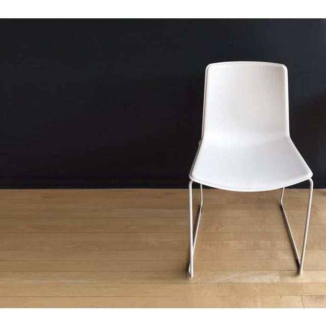 Pedrali #897 Tweet Chairs - Set of 4 - Image 3 of 7