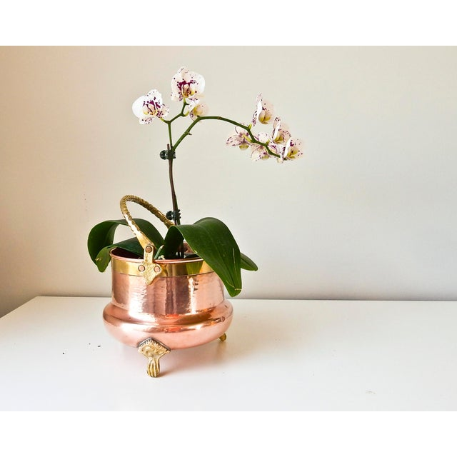 Brass Feet And Handle Copper Planter - Image 3 of 7