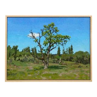 """Oregon White Oak at Rogue River Preserve"" Contemporary Landscape Oil Painting, Framed For Sale"