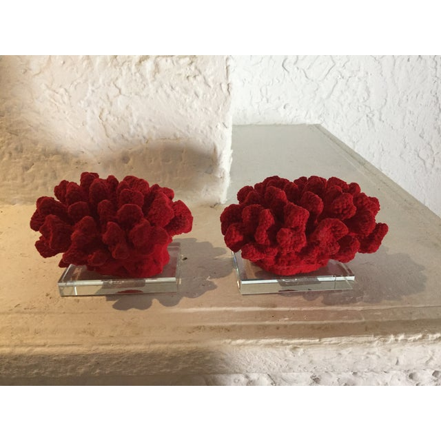 Faux Red Coral Bookends - A Pair - Image 3 of 5
