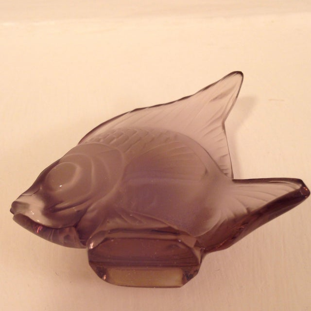 Lalique Angel Fish Mauve For Sale In Nashville - Image 6 of 8