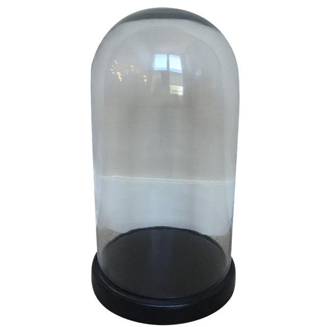 Glass Display Dome on Base - Image 1 of 3