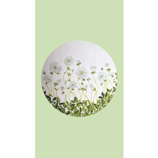 Tondi Fiori Collection Anemone Silver Circular Shaped Wallcovering On Tender Greens For Sale