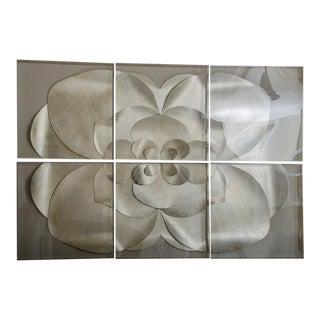 Spectacular 6-Part Flower in Acrylic Boxes For Sale