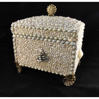 Maitland Smith Shell Encrusted Trinket Box Preview
