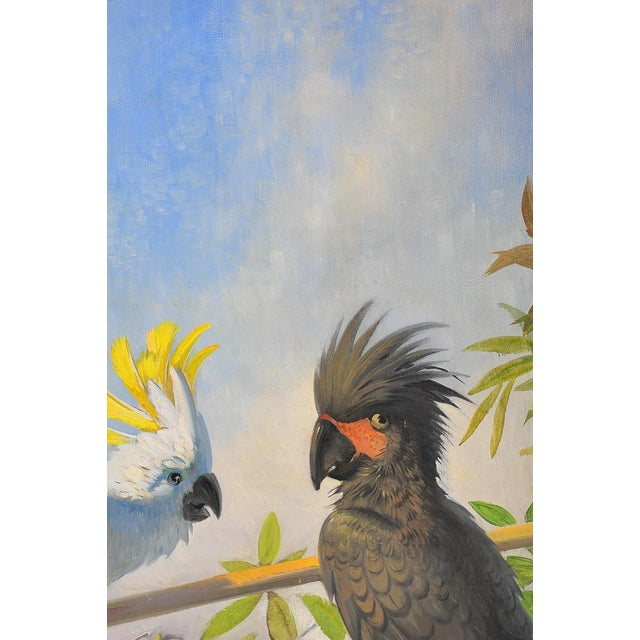 White Parrots, Oil Painting by J. Moessel For Sale In Los Angeles - Image 6 of 10