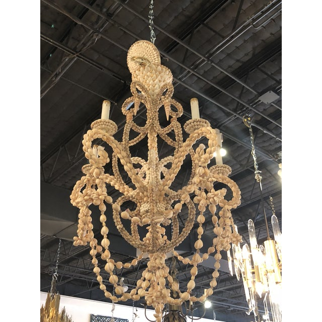 Vintage Seashell Shell Encrusted 5 Light Chandelier For Sale In West Palm - Image 6 of 10