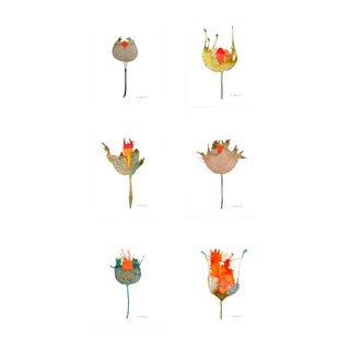 Botanical Grouping Set of 6 Giclee Prints For Sale