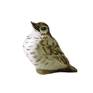 Andersen Design Fledgling Robin Figurine For Sale