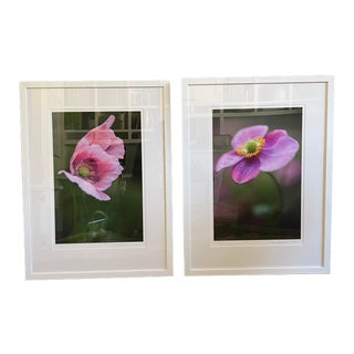 Contemporary Botanical Color Photographs by Lisa Granozio, Framed - a Pair For Sale