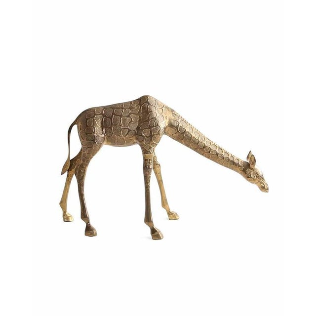 Vintage cast brass statue of a feeding giraffe. Medium size ensures both a big impact, as well as flexibility as to where...
