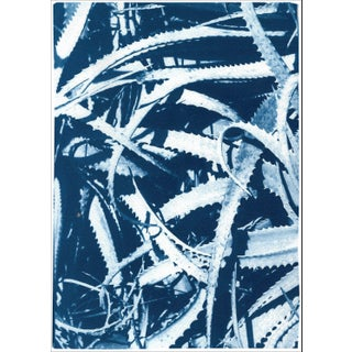 """2021 """"Aloe Leaf Jungle"""" Contemporary Abstract Botanical Limited Edition Print by Kind of Cyan For Sale"""