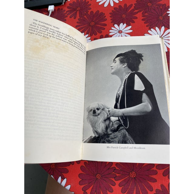 Cecil Beaton Cecil Beaton's Diaries the Wandering Years First Edition Book For Sale - Image 4 of 13