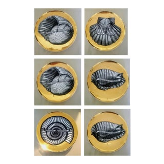 Piero Fornasetti Porcelain Gilt Rare Seashell Plates, Conchyliorum Pattern, Set of Six Plates, Circa 1950s.