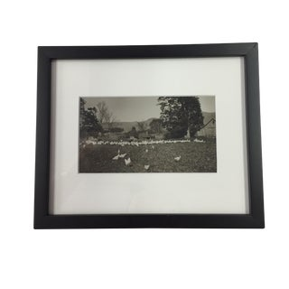 """Historic Dorset, VT"" Farm Black and White Photograph For Sale"