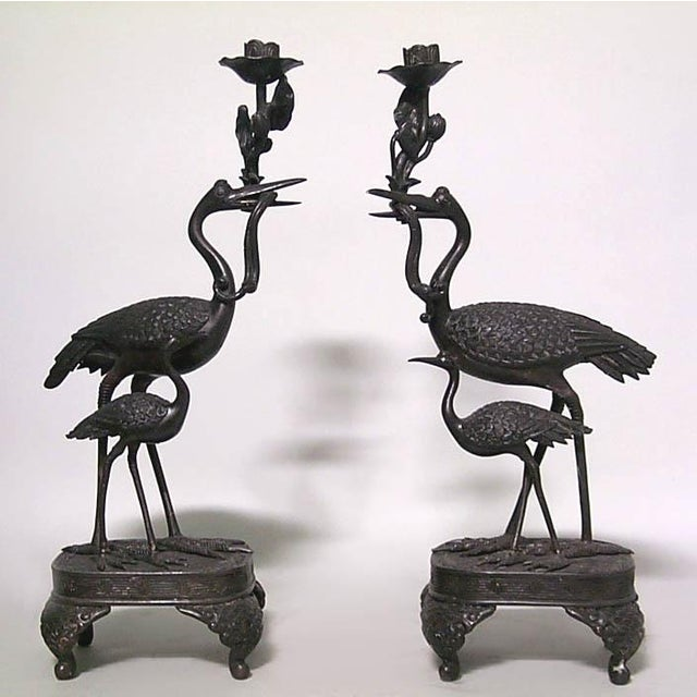 Pair of Asian Japanese style bronze double heron candlesticks with rectangular base (19th Cent)
