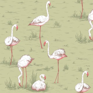 Cole & Son Flamingos Classic Animal Print Style Wallpaper - 11 Yard Roll For Sale