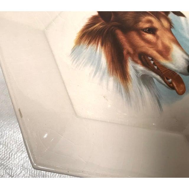 Vintage Ceramic Dog Plates - Set of 4 For Sale - Image 9 of 11