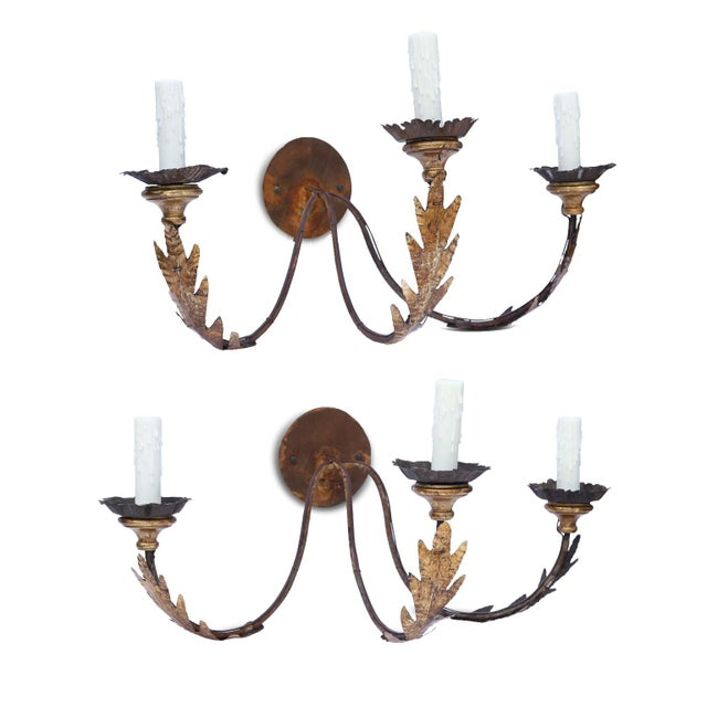 Pair of large gilt-iron sconces with three-arms, decorated in gilt-tole acanthus and giltwood bobeches with crimped edge...