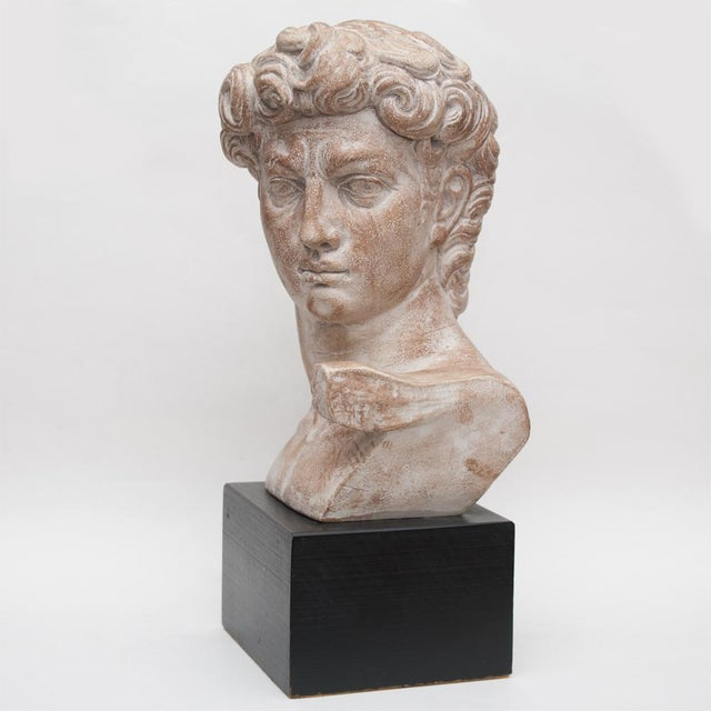 Contemporary Mid Century Ceramic Bust of David For Sale - Image 3 of 13