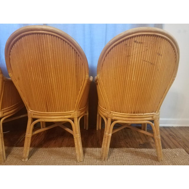 Palm Beach Pencil Reed Rattan Dining Chairs - Set of 4 For Sale In Miami - Image 6 of 10