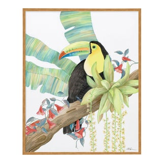 Toucan Play at That Game by Allison Cosmos in Gold Framed Paper, Medium Art Print For Sale